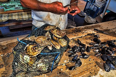 "<a href=""https://www.flickr.com/photos/croacia_/4685312158"" target=""_blank"">Ston Oysters, &copy; by Mario Fajt, on Flickr</a>"